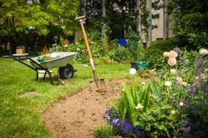 Garden with wheelbarrow and spade