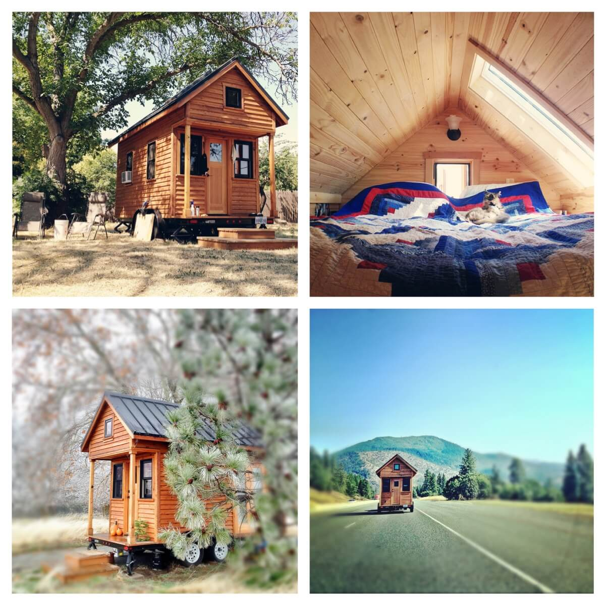 rowdykittens_tiny_house